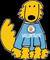 volunteer_dog